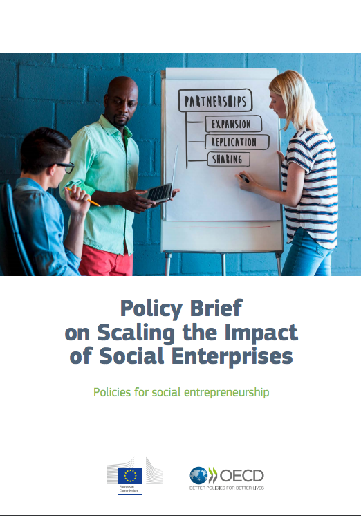 Policy Brief On Scaling The Impact Of Social Enterprises