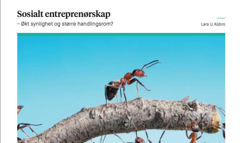Sosialt Entreprenørskap – Økt Synlighet Og Større Handlingsrom